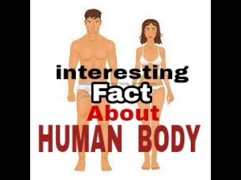 Interesting facts about human body!Hamare sarir ke rochak tathya!in hindi you didn't know human fact