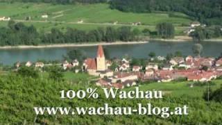 Urlaub in der Wachau Österreich | Weissenkirchen Wachau