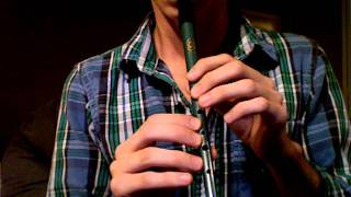 Scarborough Fair - Tin Whistle