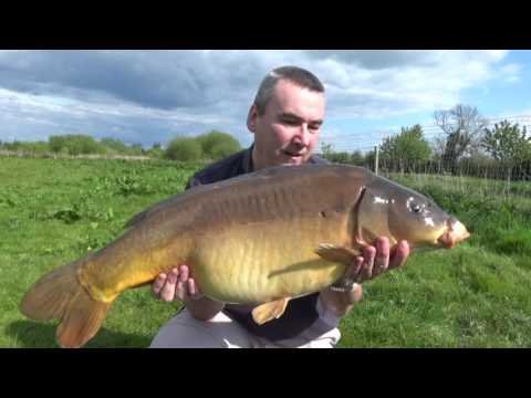 20lb Cheshire Carp Caught Fishing With Maple Peas