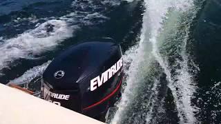 Evinrude E-Tec 40 hp (engine start up)