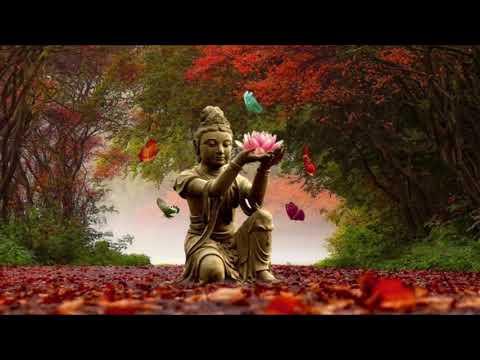 Mantra removedor energias negativas reverte obtendo força e energia vital cura e ascensão