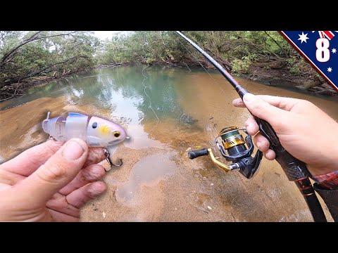 MINI Swimbait Fishing In CRYSTAL CLEAR CREEKS (New Fish Species)