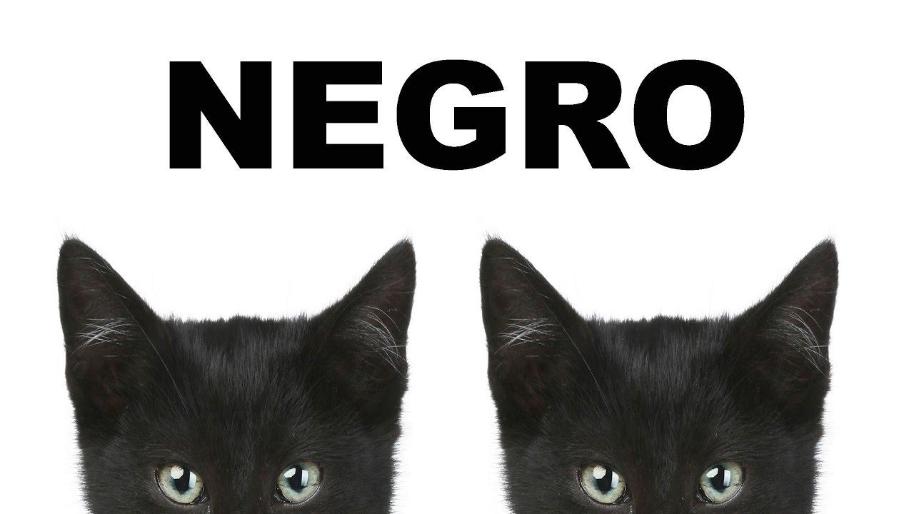 Negro aprene los colores canci n de colores para ni os - Dibujos de pared para ninos ...