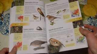 Энциклопедия животных и растений. 750 видов