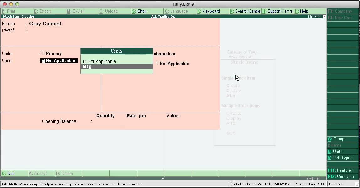 Tally erp 9 Inventory Vouchers with Live Practical on Actual