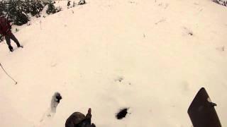 yatan tavşanı zorla vuran avcı