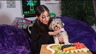 my-puppy-tries-fruit-for-the-first-time