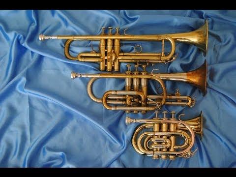 Comparison: Pocket Trumpet, Bb Trumpet and Cornet