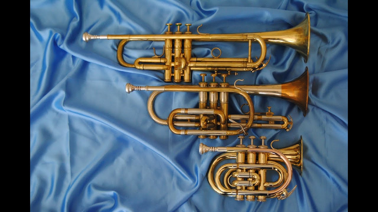 SKY Band Approved Pocket Trumpet High Quality Nickel Plated