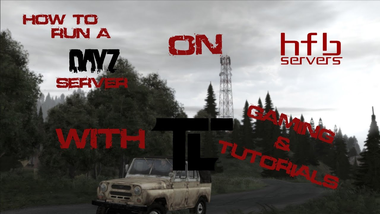 Dayz.st and HFBservers.com review - Mod Servers & Private ...