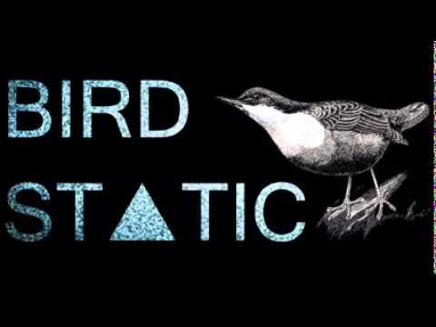 Bird Static - Restart