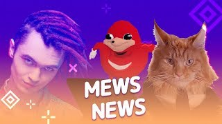Mews News   Итоги 2018 кота