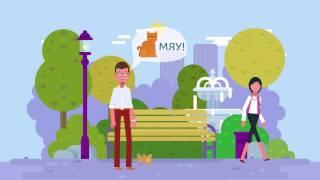 видео IT-безопасность для защиты ваших интернет проектов