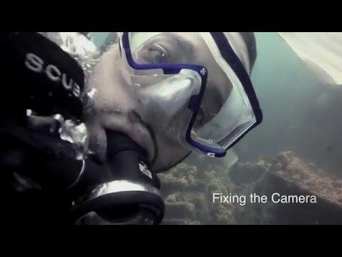 Scuba Lagos & Marine Life