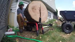Homelite 5-ton Electric Log Splitter Review - 25 in Oak Log