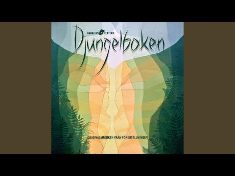 Djungelns lag (feat. Tony Könberg, Alfons Kammonen & Eric Mathiasson)