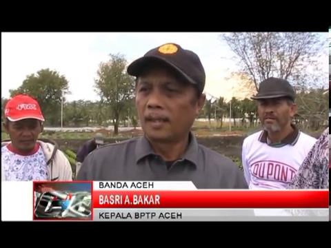 Gubernur Aceh dr. Zaini Ke Lahan Gelar Teknologi
