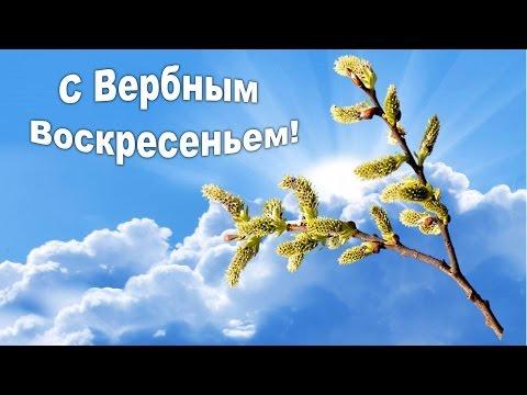 ВЕРБНОЕ ВОСКРЕСЕНЬЕ! Нежное Поздравление с вербным воскресеньем - Видео с Ютуба без ограничений