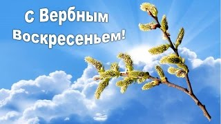 ВЕРБНОЕ ВОСКРЕСЕНЬЕ! Нежное Поздравление с вербным воскресеньем