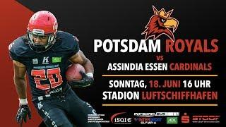 Potsdam Royals vs. Assindia Cardinals