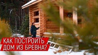 Смотреть видео Как построить дом из бревна🔨 Строительство сруба под усадку в Москве онлайн