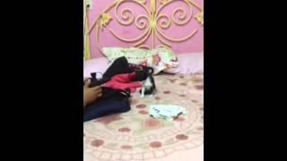 Pinshi gato thumbnail