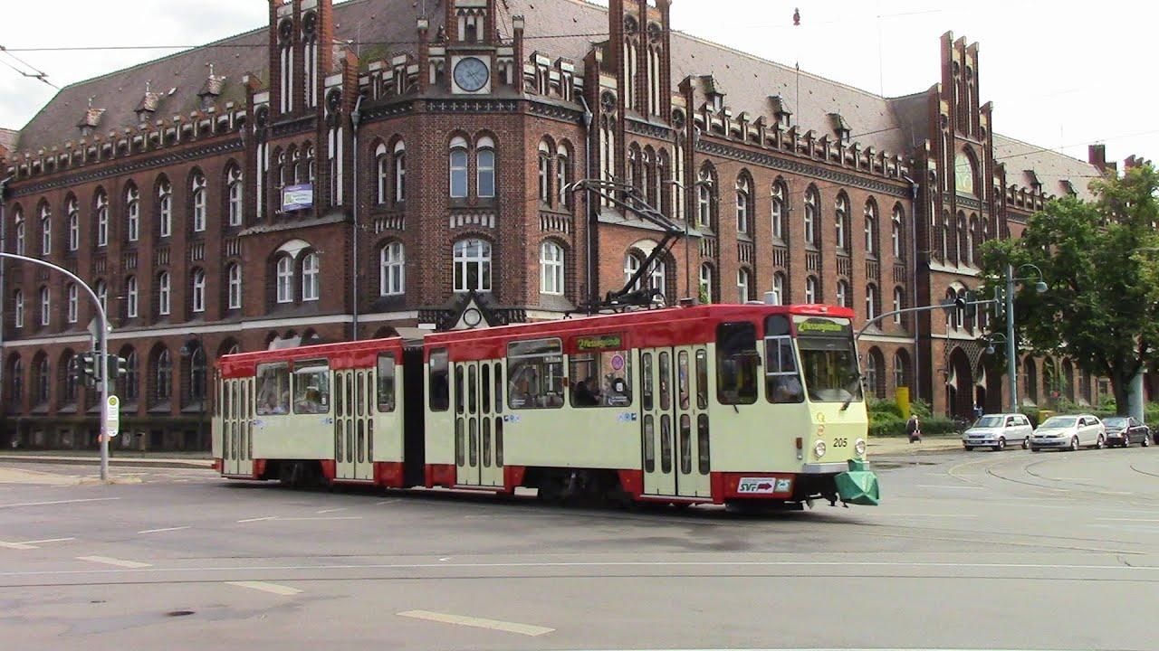 Wildall Frankfurt Oder