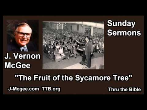 The Fruit of the Sycamore Tree - J Vernon McGee - FULL Sunday Sermons