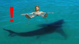 10 Unexpected SHARK Encounters (that will make you cringe)