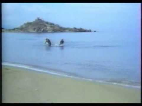 1973 Ghost In The Noonday Sun (filmed in Cyprus)