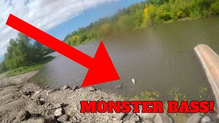 Catching MONSTER Bass on SENKOS Bank Fishing