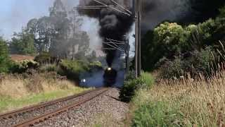 Ja 1275 Steam Sensation