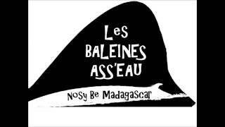 Global Fin Print - Nosy Be - Madagascar - May 2016