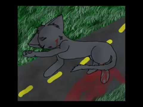 Warrior Cats Jayfeather Warriors AMV // Cinder...