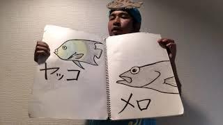 魚の名前で前前前世 thumbnail