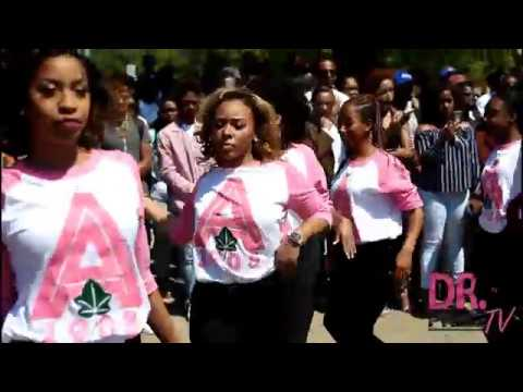 The 2017 Southern University YARD TAKEOVER: Alpha Kappa Alpha Sorority, Inc.