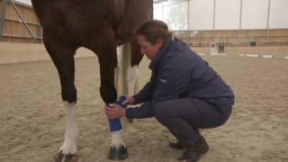 How to Apply and Remove a Schooling Bandage