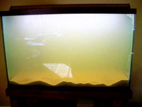 110 gallon aquarium set up part 2 youtube for How to fix a cloudy fish tank