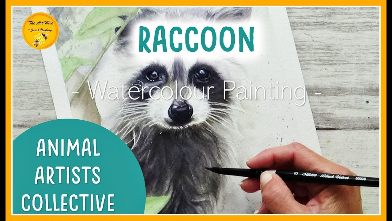 Animal Artists Collective : RACCOON | WATERCOLOUR painting tips and techniques (Sept 2019)9