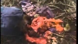 Redneck Zombies (1989) Trailer
