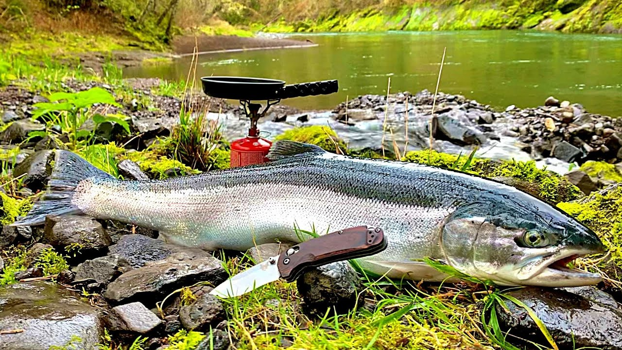 Download GIANT TROUT FISHING in PRISTINE WATERS (Steelhead Catch & Cook!!!)