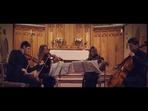 Back To The Future Theme played by the Endymion String Quartet
