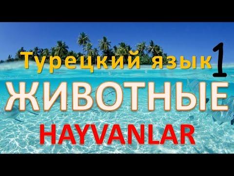 Турецко-русский словарь -