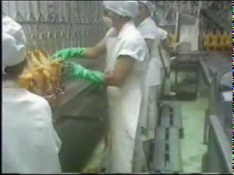 V proceso beneficio de aves doovi for Despresadora de pollo
