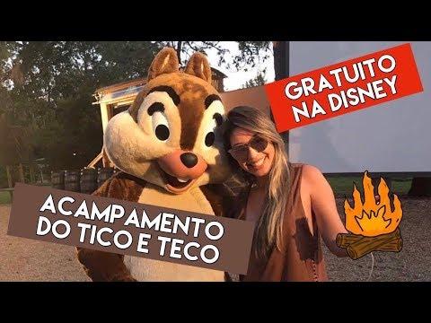 ACAMPAMENTO GRATIS COM O TICO E O TECO NA DISNEY