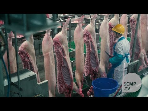 Inside China's largest meat production plant