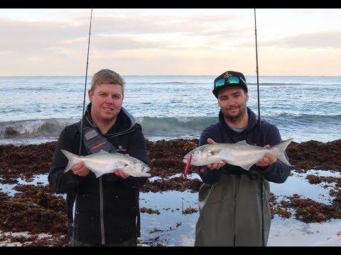 Tailor Fishing Lancelin