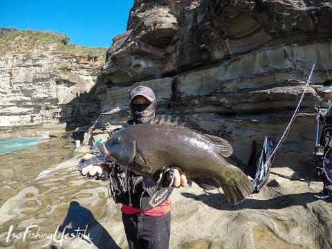 IFL TV EP 46: ISO Fishing Sydney For Drummer & Groper