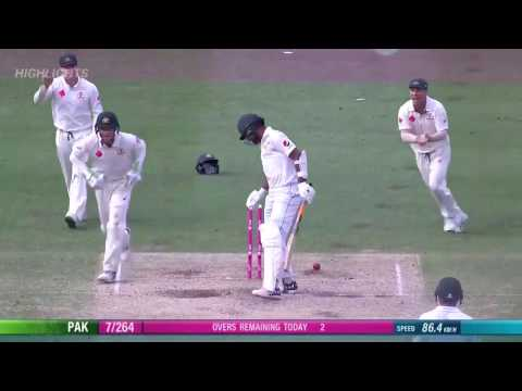 nathan lyon's best ball ever bowled